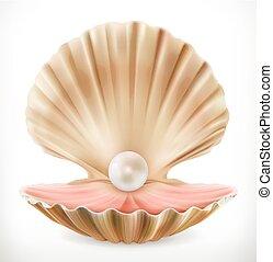 cáscara, vector, pearl., 3d, almeja, ostra, icono