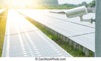 câmera cctv, monitorando, em, planta poder solar