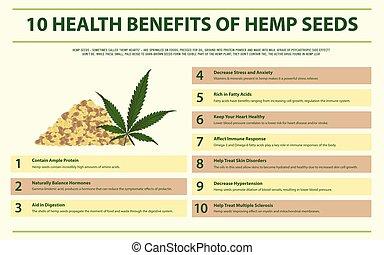 cânhamo, 10, saúde, infographic, horizontais, sementes, benefícios