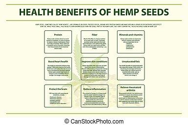 cânhamo, saúde, infographic, horizontais, sementes, benefícios
