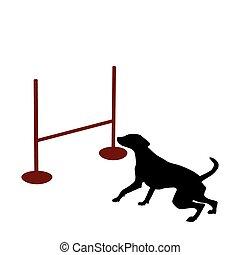 cão, e, obstáculo
