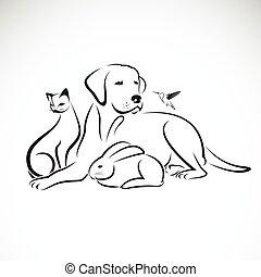 cão, grupo, gato, pássaro, experiência., vetorial, animais estimação, coelho branco, humming