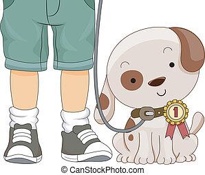 cão, mostrar, primeiro prêmio