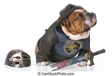 cão protetor