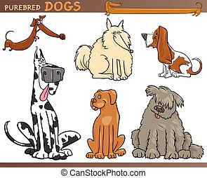 cão, raças, caricatura, jogo