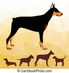cão, raças, silhuetas, collection.