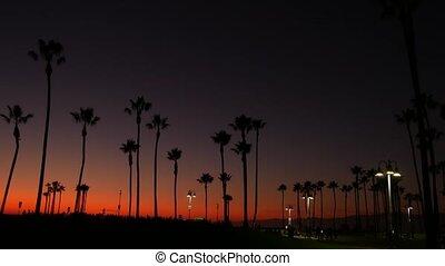célèbre, coucher soleil, ca, pacifique, crépuscule, ...