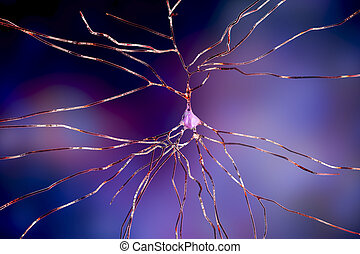 célula, cérebro, neurônio