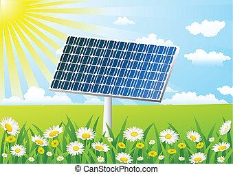 célula, grama campo, solar
