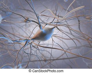 célula, nervo