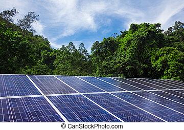 célula, paneles solares