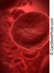 célula, sangre, rojo