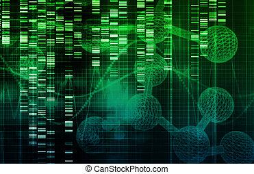 célula, tallo, investigación