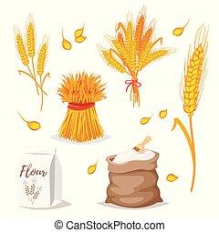céréales, wheat., -, illustration