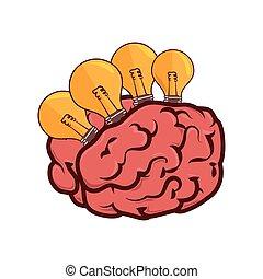 cérebro, bulbo, luz