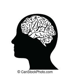 cérebro, cabeça, mostrado silhueta