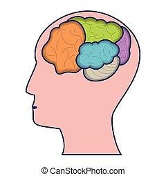cérebro, cabeça, símbolo, isolado