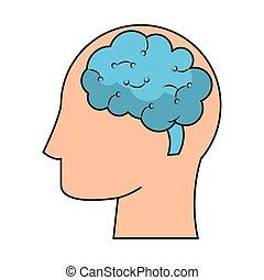 cérebro, cabeça, silueta, símbolo, human