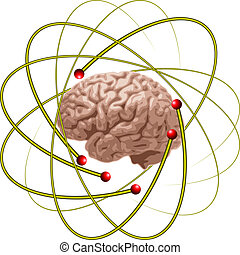 cérebro, cientistas