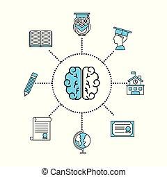 cérebro, conceito, estudante, ilustração, informação