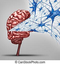 cérebro, conceito, neurônios