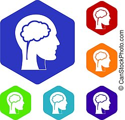 cérebro, conjunto cabeça, hexágono, ícones