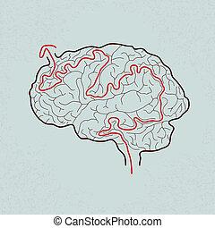 cérebro, correto, labirinto, caminho