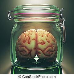 cérebro, em, a, pote