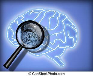 cérebro, -, identidade, personalidade