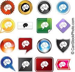 cérebro, jogo, variedade