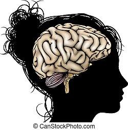 cérebro, mulher, silueta