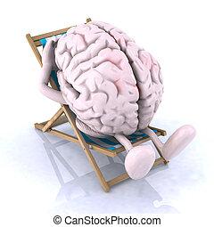cérebro, que, descansos, ligado, um, cadeira praia