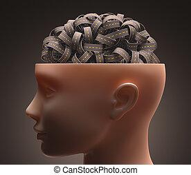 cérebro, rodovia