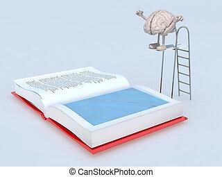 cérebro, trampoline, mergulho, livro, human