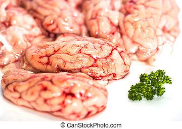 cérebros, branca, closeup, salsa, fundo