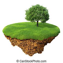 césped, con, un, árbol