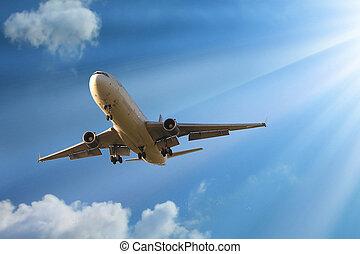 céu, avião, mosca
