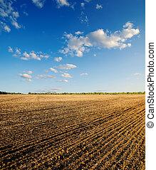 céu azul, campo, pretas, ploughed, sob