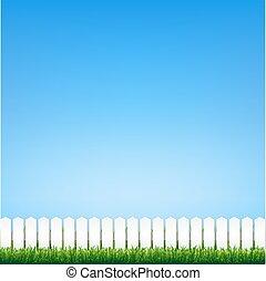 céu azul, capim, verde