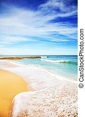 céu azul, e, praia arenosa