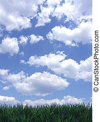 céu azul, grama verde