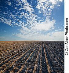 céu azul, nublado, campo, pretas, ploughed, sob