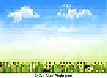 céu, capim, fundo, verão, vector., verde, natureza