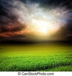 céu escuro, campo verde, de, capim, com, luz sol