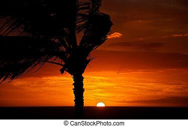 céu, pôr do sol, vermelho