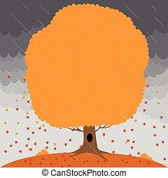 céu tempestuoso, folhas, árvore, chuva, outono, fundo, queda