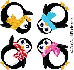 círculo, pingüins, grupo, isolado, branca