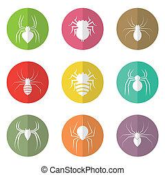 círculo, vetorial, grupo, aranha