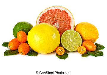 cítrico, fruit.
