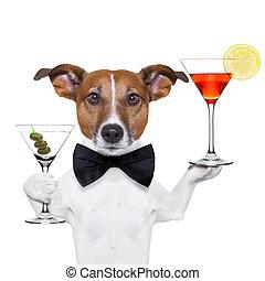 cóctel, perro, anteojos de martini